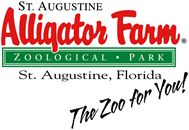 St. Augustine Alligator Farm.
